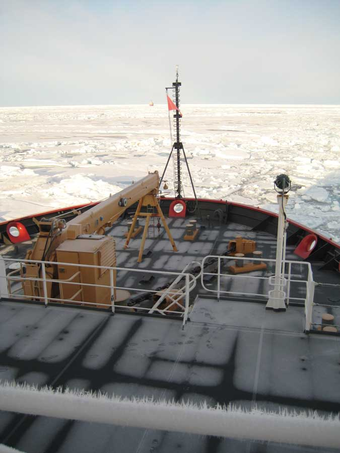 USCGC Healy crewmembers observe Arctic research operations from Healy's bow. Photo courtesy of author.