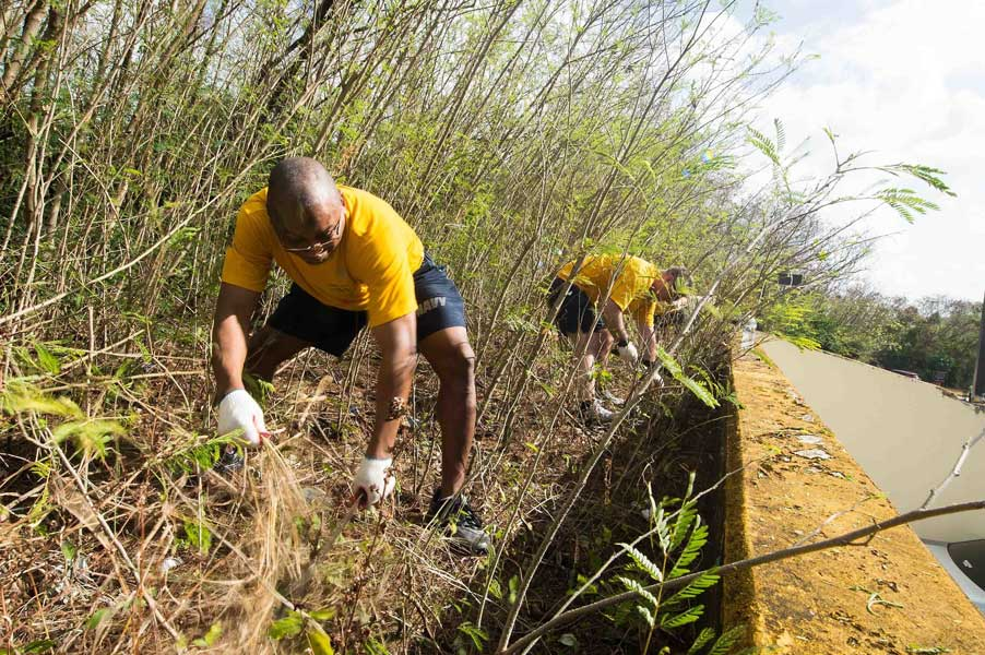 Chief Culinary Specialist Thomas Dennis, from Greenville, S.C., a crew member of the guided-missile cruiser USS Mobile Bay, clears overgrowth during a community service project at Guam Memorial Hospital in 2016. Providing a combat-ready force to protect collective maritime interests, Mobile Bay, assigned to the Stennis strike group, is operating as part of the Great Green Fleet on a regularly scheduled Western Pacific deployment. Photo by Mass Communication Specialist 2nd Class Ryan J. Batchelder, courtesy of U.S. Navy.